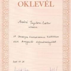 2007 - Országos Keresztszemes Kiállítás és Verseny_Az_oklevel2007