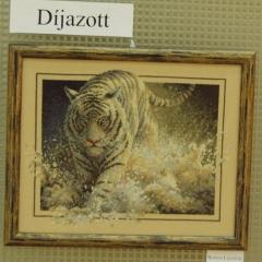 2009_Országos keresztszemes kiállítás és verseny_019